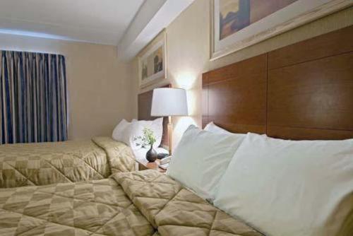 Comfort Inn London - London, ON N6E 1M3