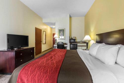 Comfort Inn and Suites Thomson Photo