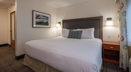 Best Western Plus University Park Inn & Suites Photo