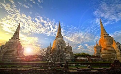 Slow Tree Ayutthaya photo 12