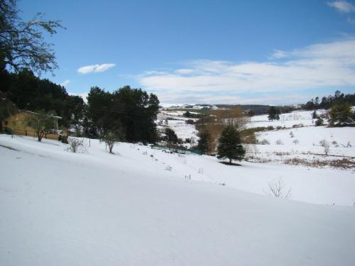 Wagon Trail Cottage Photo