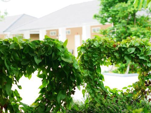 Sunee View Hotel photo 16