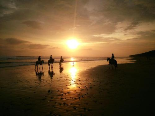 Mar Y Sol Ecotel Photo