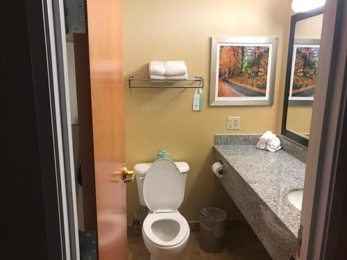 Best Western Plus New England Inn & Suites - Berlin, CT 06037