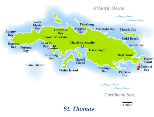 Cowpet Bay Condo St Thomas