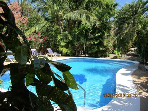Hotel Belvedere Playa Samara Costa Rica Photo