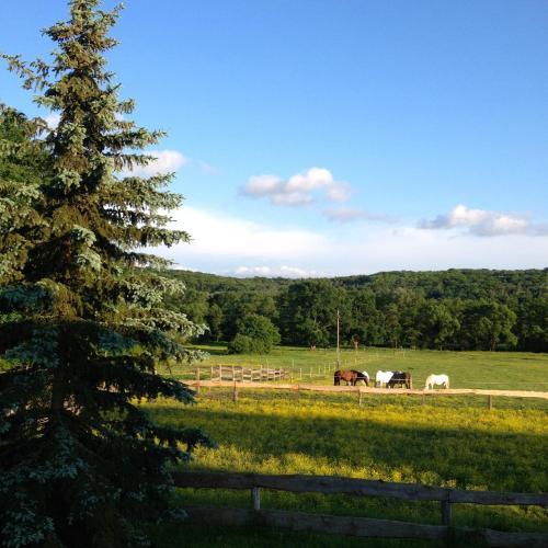 Kerca Bio Farm