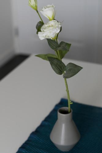 White Moon Apartment photo 50