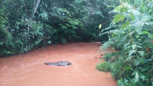 Foto de Reserva Natural MiCaf� RV