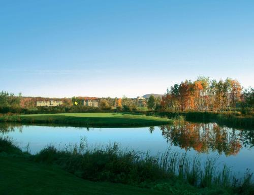 Four Points by Sheraton Quebec Resort Photo