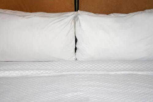 Four Points by Sheraton Calgary Airport Photo