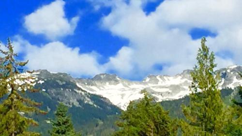 Mountain Escape - Whistler, BC V0N 1B1