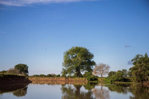 Foto de Pousada Barao do Peixe