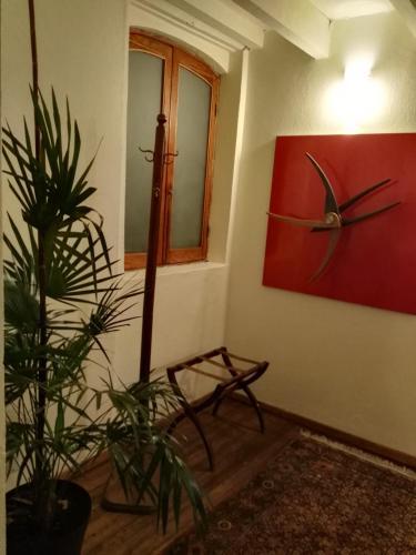 Guest house Aldama Photo