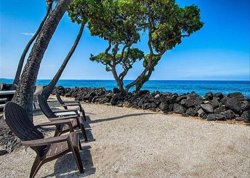 Kona Isle D4 Photo