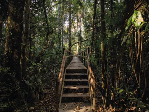Inkaterra Reserva Amazonica Photo