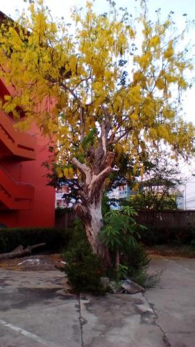 SJ Apartment Ayutthaya photo 26