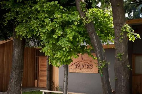 Raices Bed and Breakfast Photo