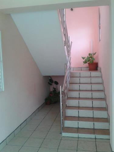 Apartments Surac