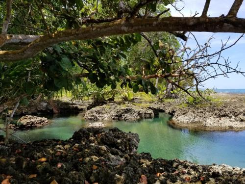 Piscina Natural on the Sea Photo