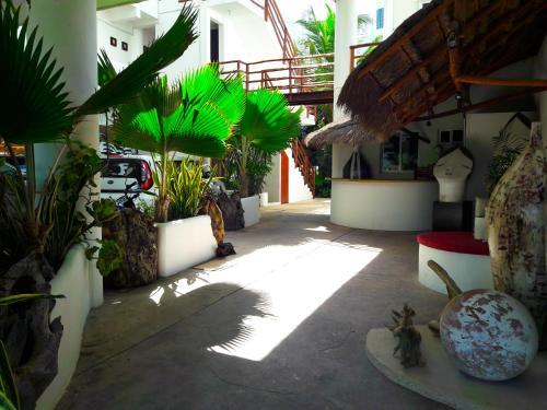 40 Cañones & Apartamentos Photo