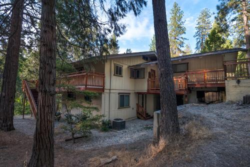 Sierra Springs Photo