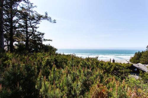 Sea Cliff Photo