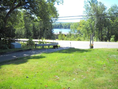 Lakeview Motel - Haliburton, ON K0M 1S0