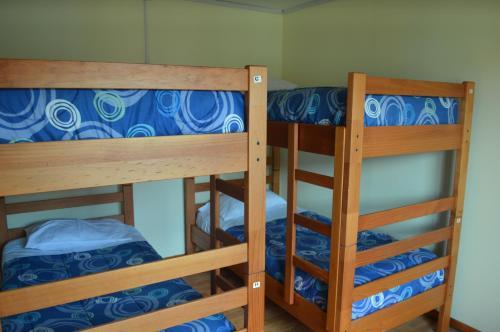 Carfran Patagonia Hostel Photo