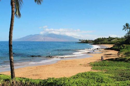 Makena Surf Resort #e-205