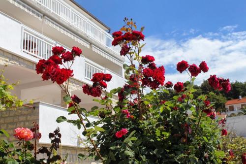 Apartment Hvar 5719b