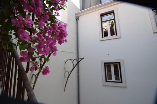 Lisbon Wine Hotel photo 5