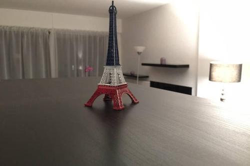 Eiffel Tower Cozy Place photo 2