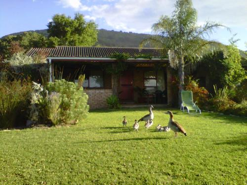 Brenton Lake Holiday Cottages Photo
