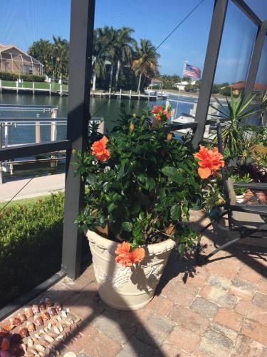Marco Island Paradise - Marco Island, FL 34145