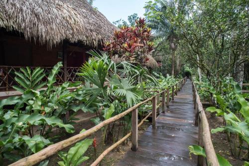 Las Guacamayas Lodge Resort, Selva Lacandona, Chiapas México Photo