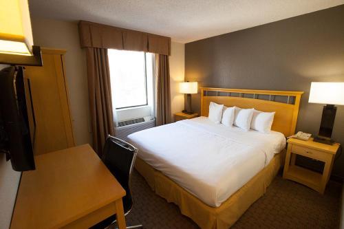 Hudson River Hotel photo 11