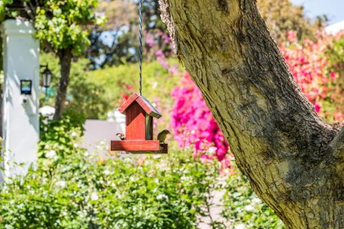 7 Church Street Guest House Photo