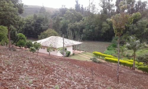Sitio D. Tereza Photo