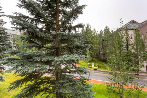 Kiva 333 - Beaver Creek, CO 81620