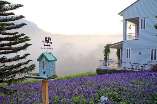 The Bluesky Resort @ Khao Kho