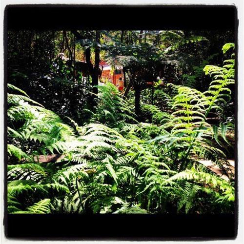 Pousada Vila Solaris Photo