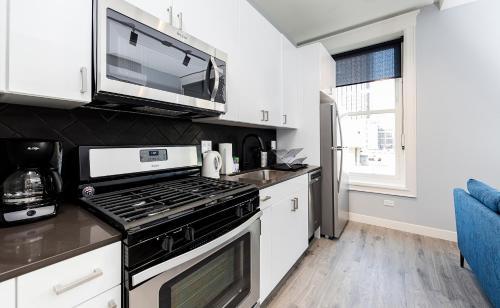 Chocolate Apartment - Chicago, IL 60605