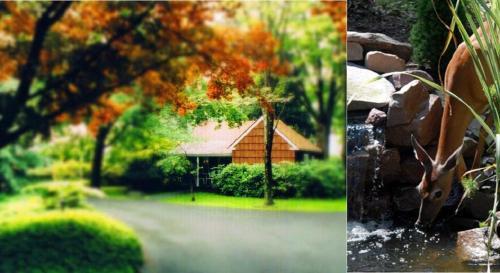 Chestnut Grove Village - Cresco, PA 18326