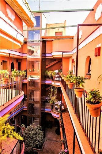 Patio de La Alameda photo 43