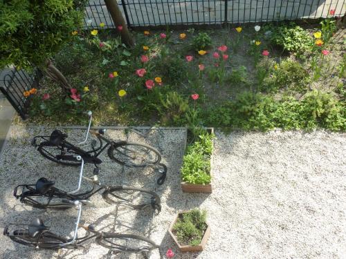Alberti Bed & Bike