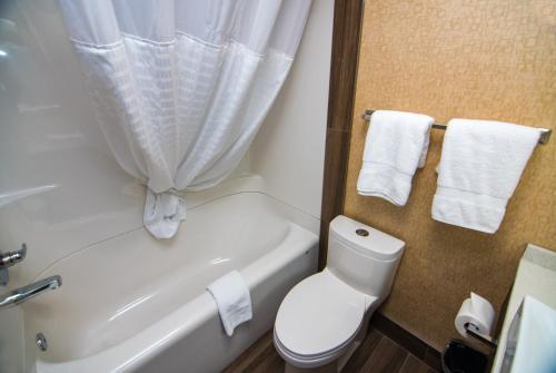 Baymont Inn and Suites Medicine Hat Photo