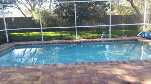Modern Pool Home