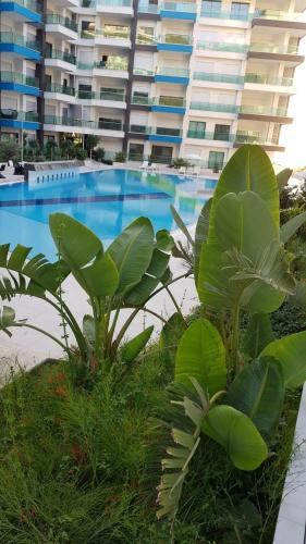 Alanya Apartment in Konak Seaside rooms
