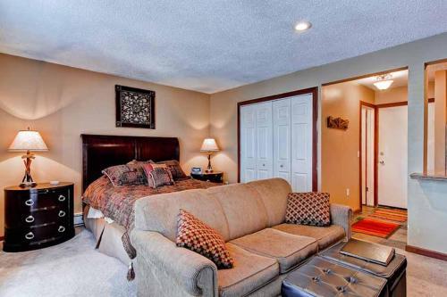 Charming 1 Bedroom - Derstrmrk 117 - Breckenridge, CO 80424